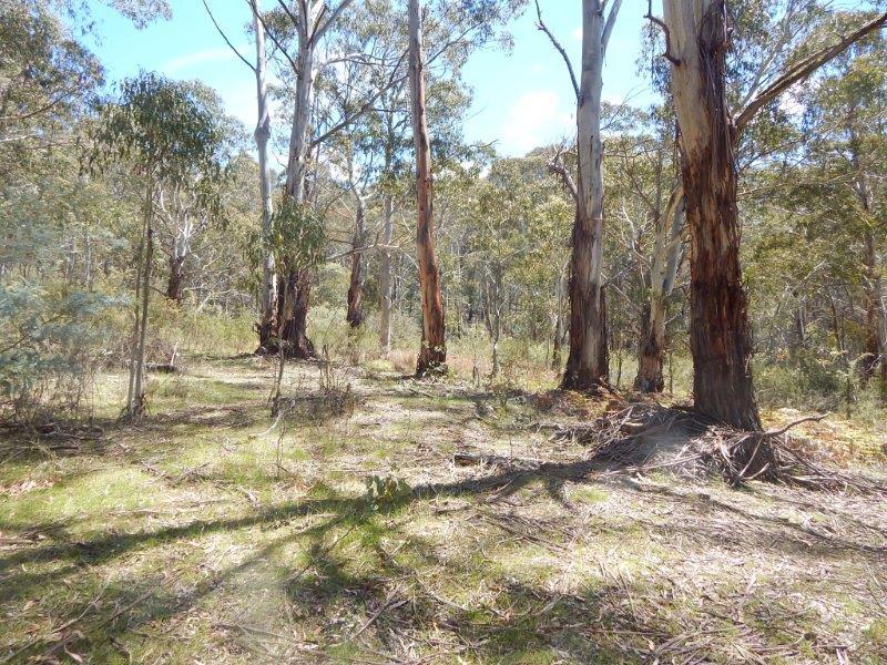 Kennedy's Road, Yaouk, NSW 2629