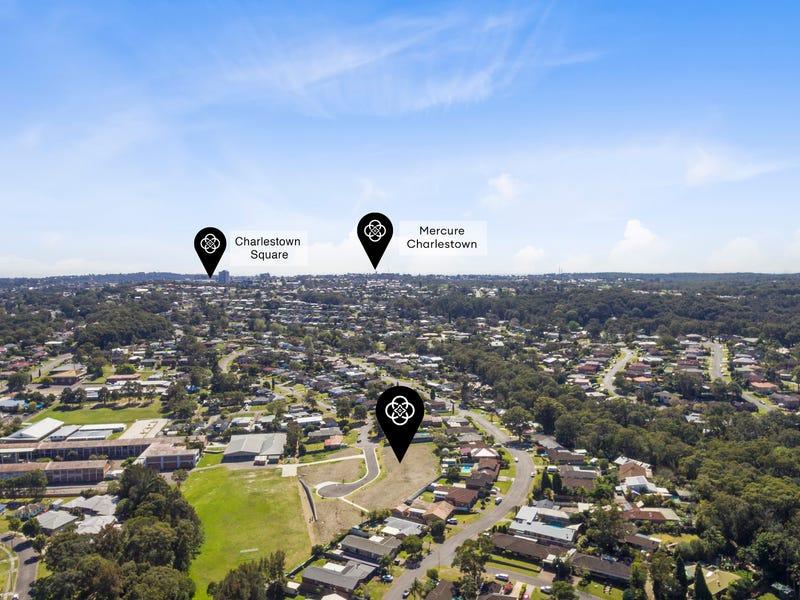 9 Birkwood Close, Charlestown, NSW 2290
