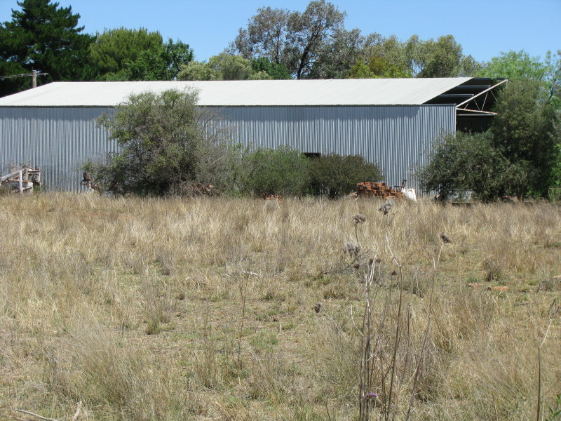 127 Old Backwater Road, Narromine, NSW 2821