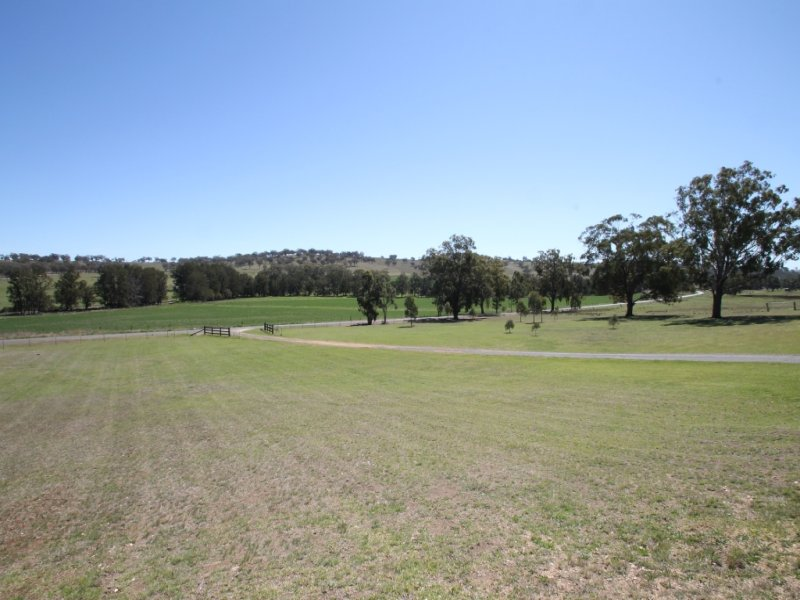657 Borambil Creek Road, Willow Tree, NSW 2339