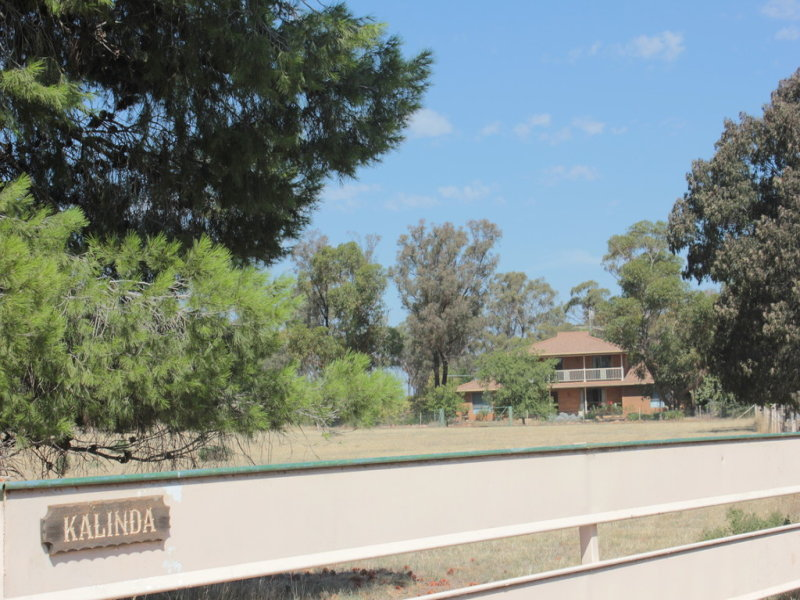 7591 Milvale Road, Temora, NSW 2666