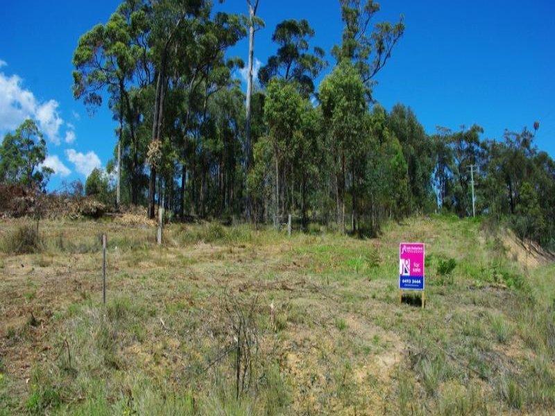 Lot 21 Bermagui-Cobargo Road, Bermagui, NSW 2546