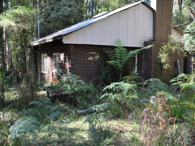 239 Big Pat's Creek Rd, Big Pats Creek, Vic 3799