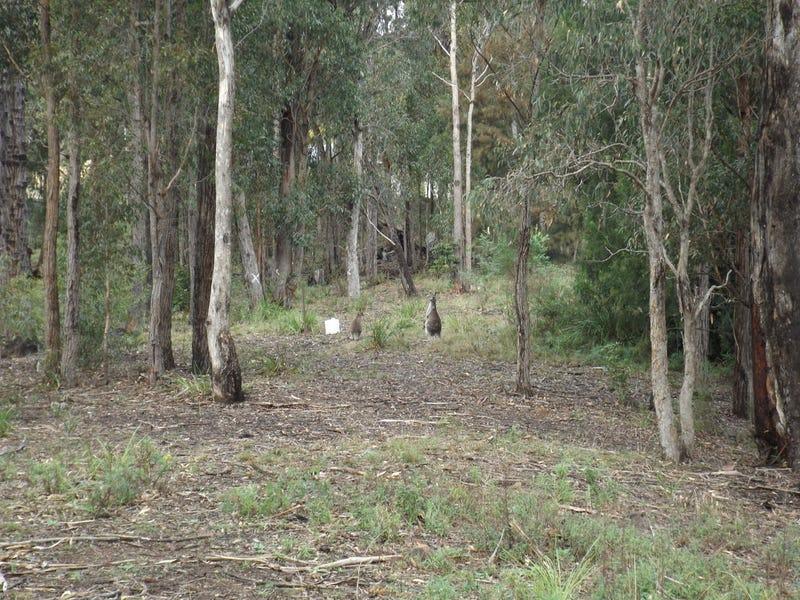 Lot 41, Bournda Park Way, Wallagoot, NSW 2550