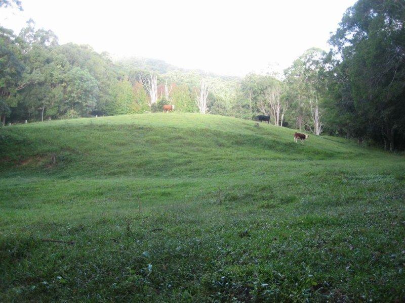 5 Ryans Road, Smiths Creek, NSW 2484