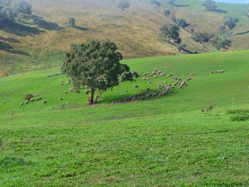 Blackmans Creek Road, Bigga Via Crookwell, Crookwell, NSW 2583