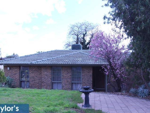 22 Pierre Road, Modbury, SA 5092