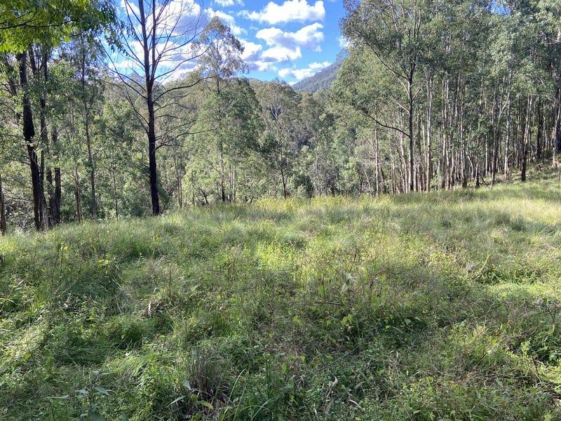Lot 109 Carrowbrook Road, Carrowbrook, NSW 2330