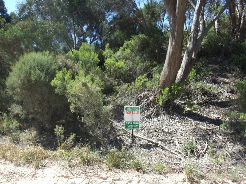 Lot 194, Island Beach Road, Island Beach