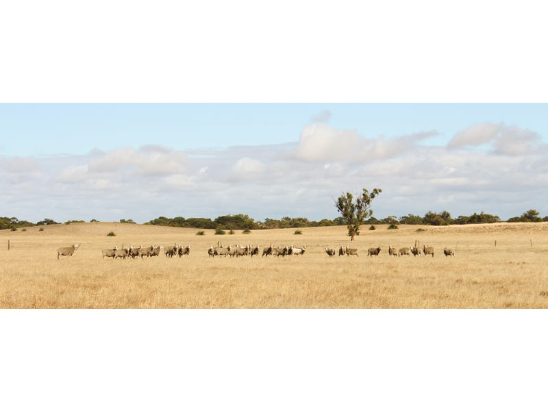 Sec 76 Emu Flat Road, Senior, SA 5268