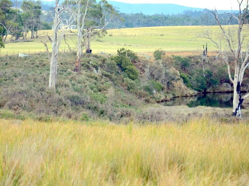 10220 Tasman Highway, Little Swanport, Tas 7190