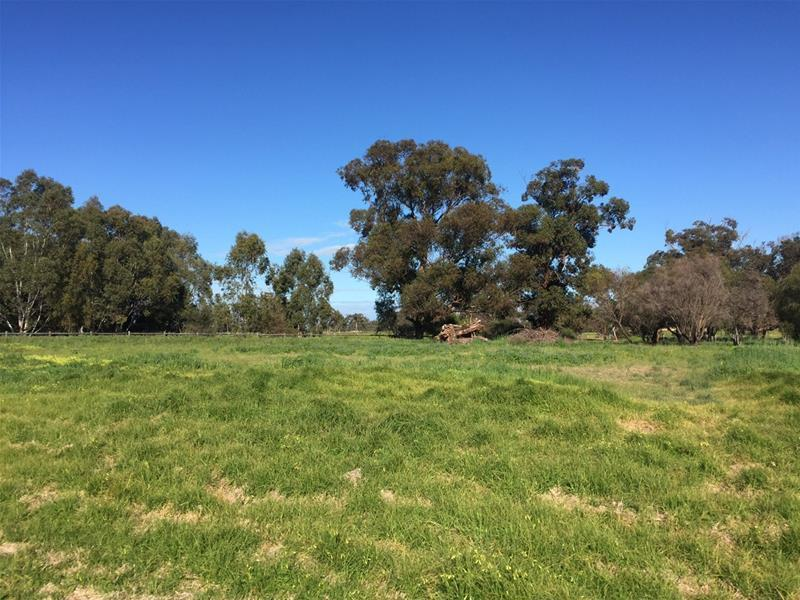 Lot 161 James Eden Drive, West Pinjarra, WA 6208