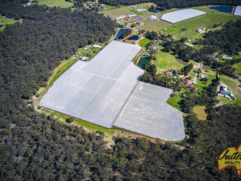 154 Aberfoyle Road, Wedderburn, NSW 2560