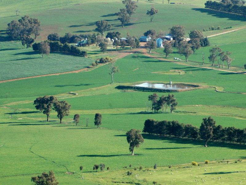 Woodside, Yerong Creek, NSW 2642