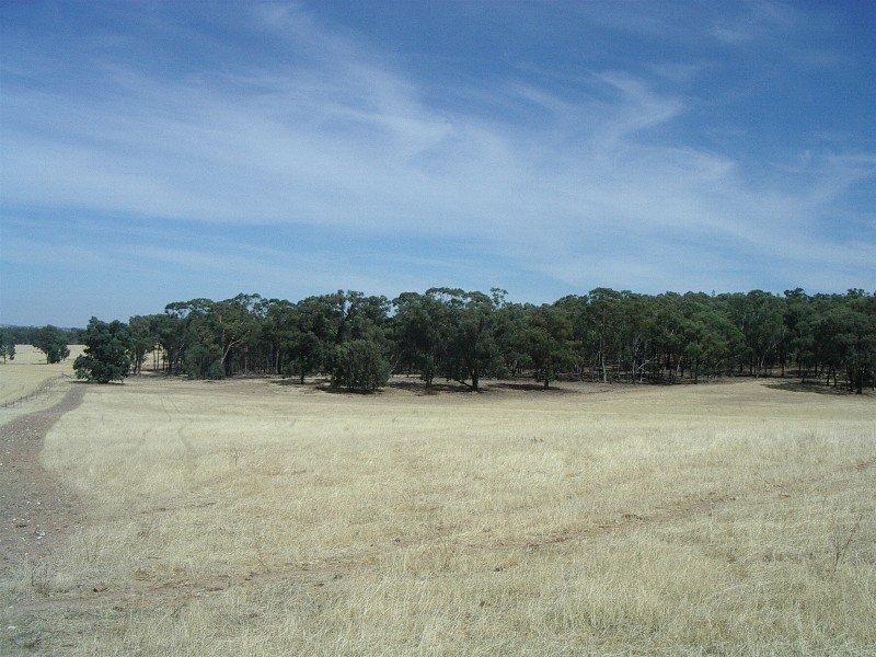 6 OLD COMBANING ROAD, Springdale, NSW 2666