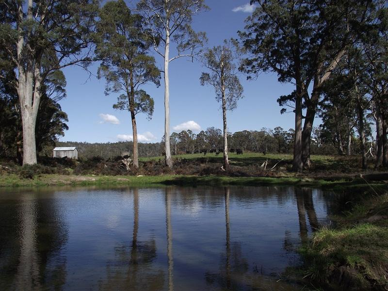2928 Woodsdale Road, Woodsdale, Tas 7120