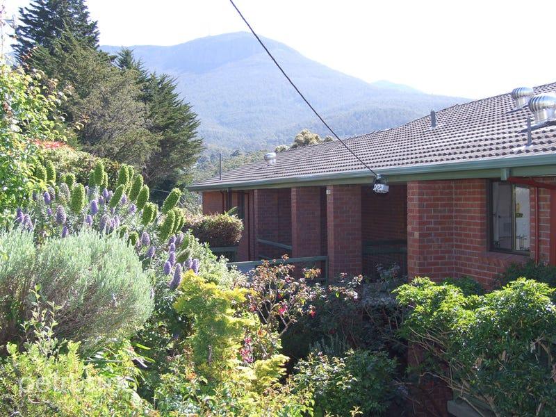 5/2 Ingram Street, South Hobart, Tas 7004