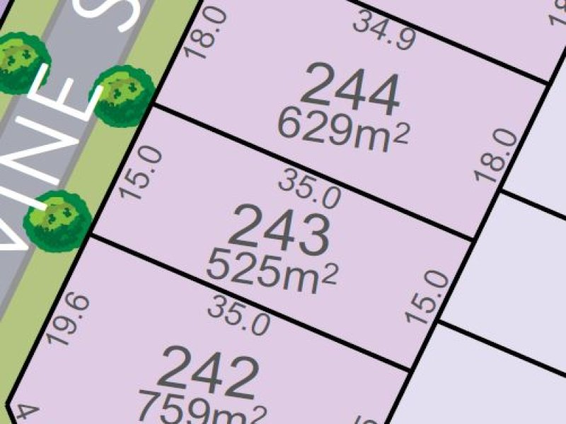 Lot 243, Vine St, Chisholm, NSW 2322