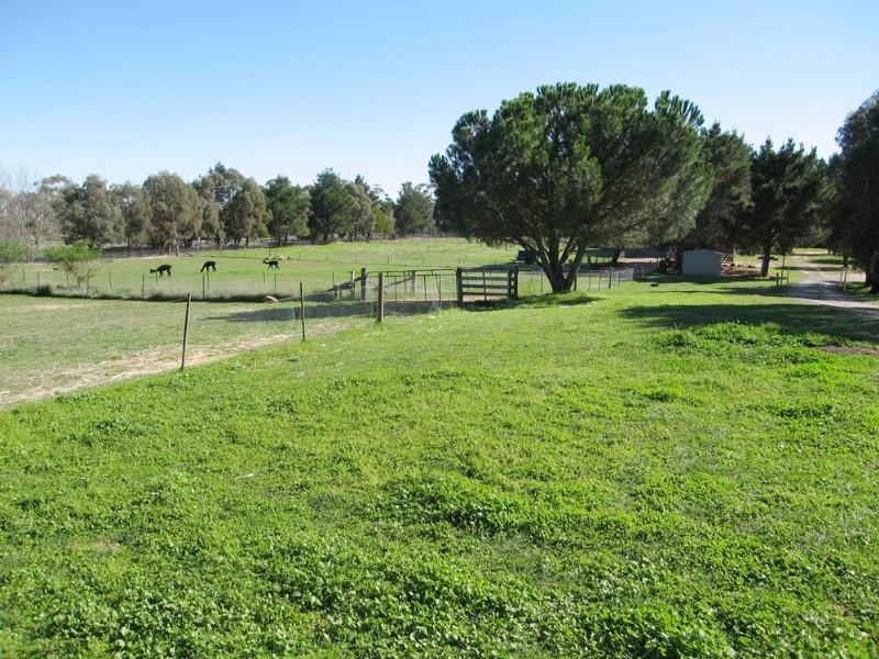 42 The Forest Road, Bungendore, NSW 2621