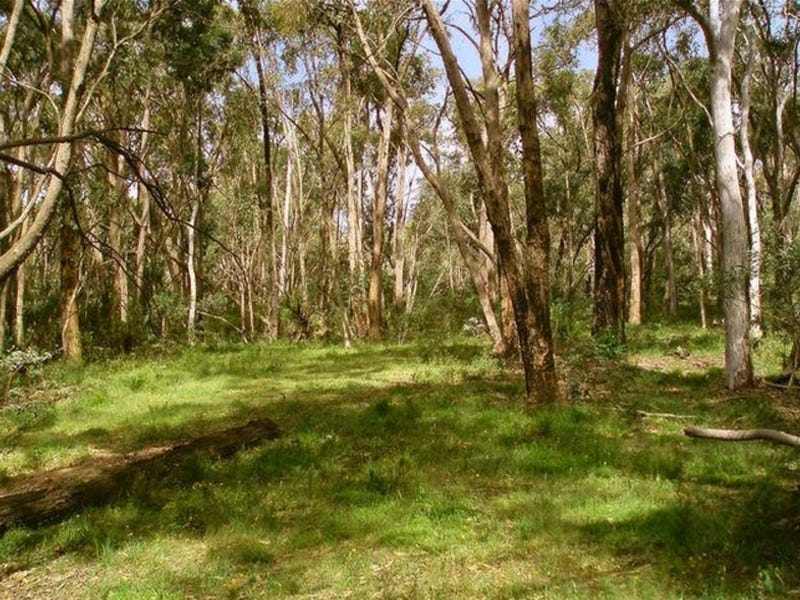 Lot 1 DP 739788 Doctors Flat Road, Wee Jasper, NSW 2582