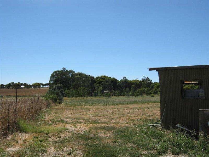 Lot 54 Milne Street, Rhynie, SA 5412