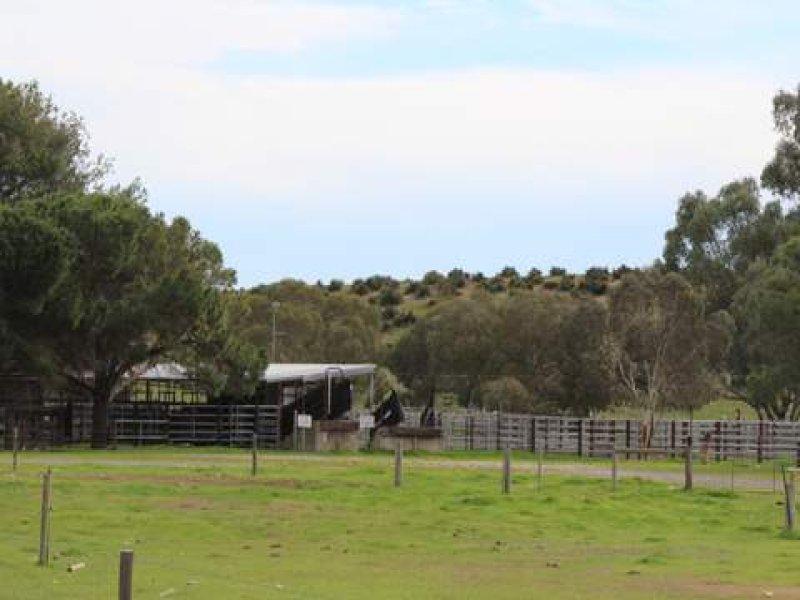 196 Gumwell Road, Tintinara, SA 5266