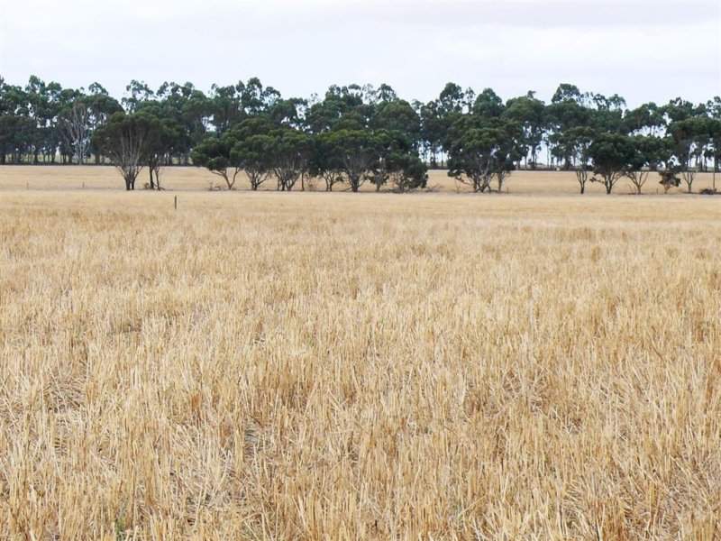 Lot 146 Backmans Rd, Neridup, WA 6450