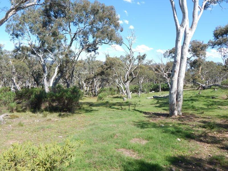 Lot 115 Carlaminda Road, Numeralla, NSW 2630