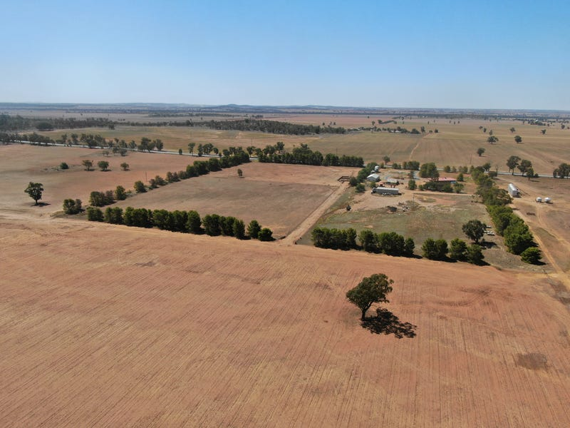 8242 Newell Highway, Mirrool, NSW 2665