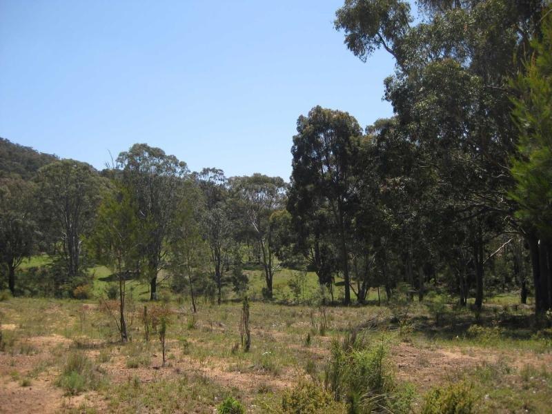 779 Debeyers Road, Pokolbin, NSW 2320