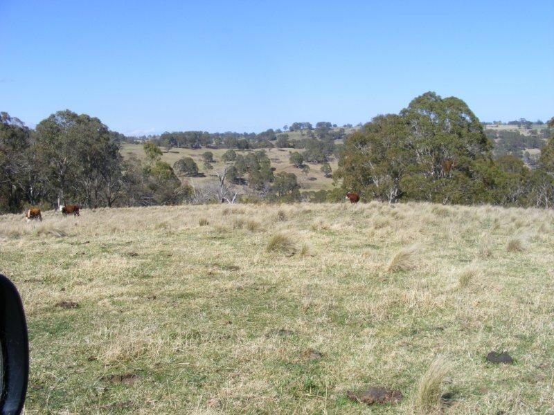 . Grahams Valley Road, Ben Lomond, NSW 2365