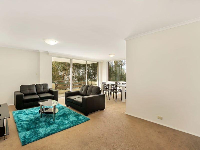 14/36-38 Penkivil Street, Bondi, NSW 2026