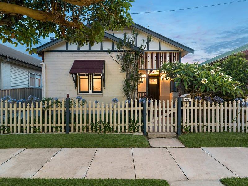 29 Braye Street, Mayfield, NSW 2304
