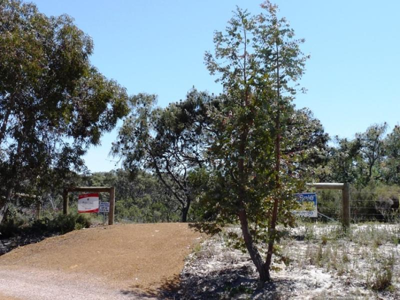 Lot 65 Tranquil Drive Estate, Windabout, WA 6450