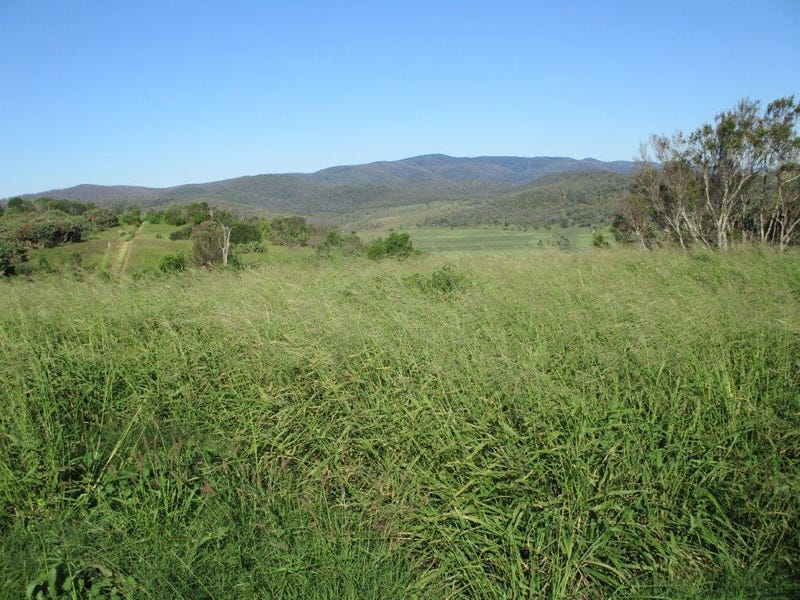 """AUCTION """"BRAESIDE""""  - 509 ACRES PRIME CATTLE GRAZING, Bell, Qld 4408"""