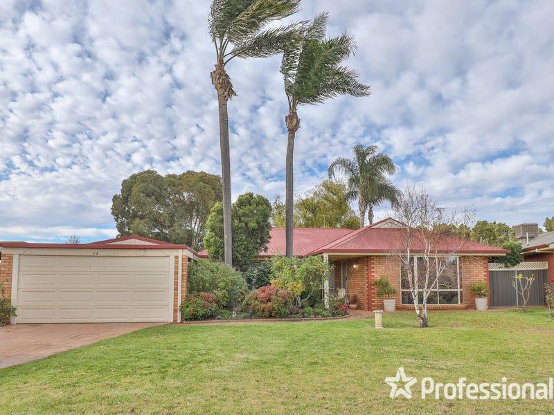 12 Macquarie Court, Mildura, Vic 3500