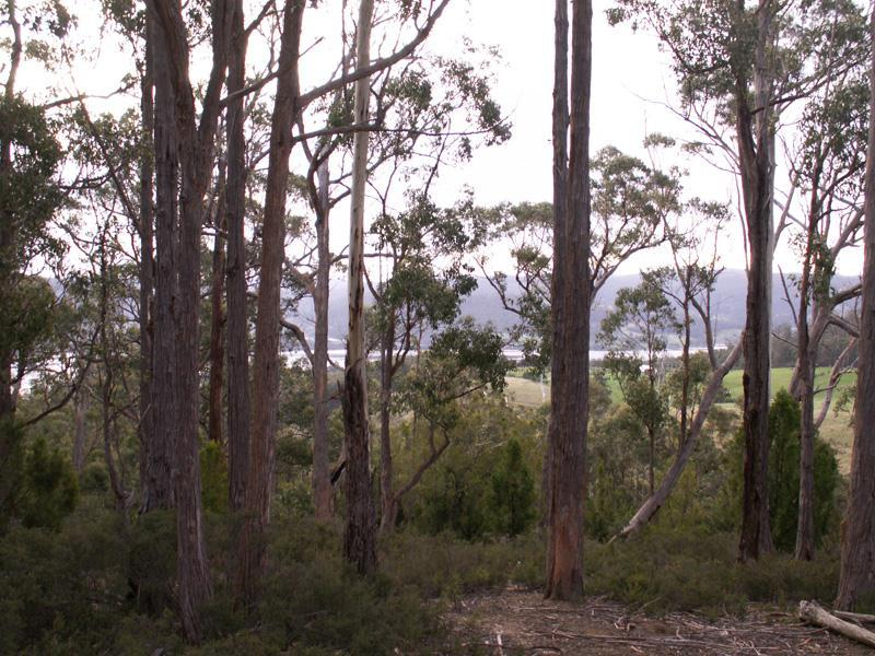 Lot 119720, 1-190 Oakfords Road, Lower Wattle Grove, Tas 7109