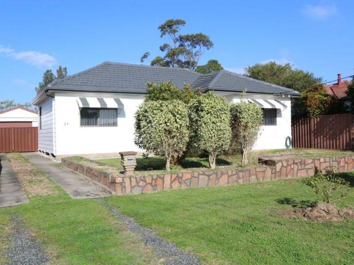24 Anderson Drive, Tarro, NSW 2322