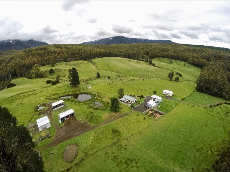 270 Musk Valley Road, Blackwood Creek, Tas 7301