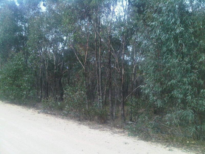 Lot 13 Moliagul Drive, Moliagul, Vic 3472