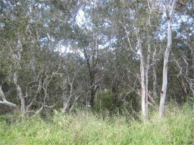 Address available on request, Abington, Qld 4660