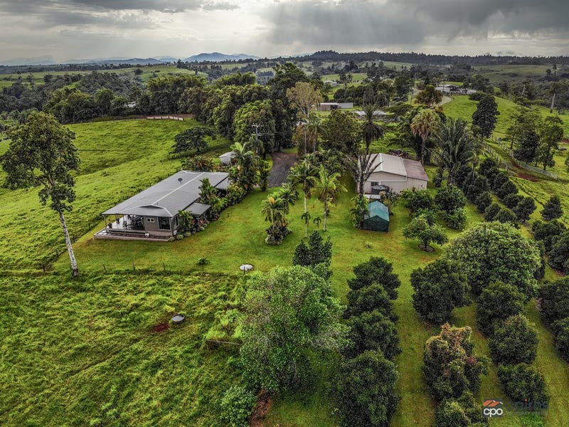 118 Ducrot Road, Upper Daradgee, Qld 4860