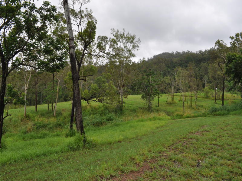 1038 Devereux Creek Road, Devereux Creek, Qld 4753