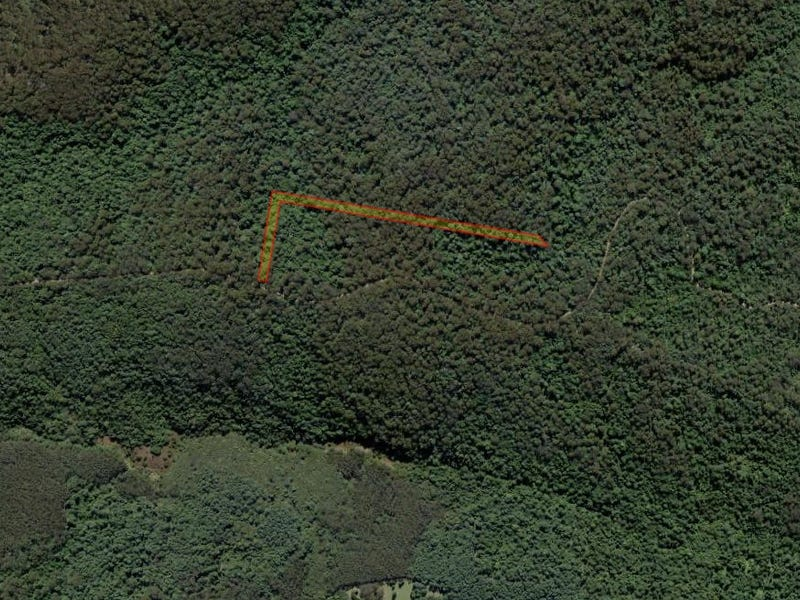 . Baker Plain Road (2), Billys Creek, NSW 2453