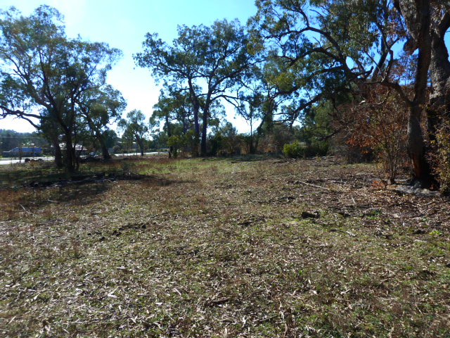 1554 Peabody Rd, Molong, NSW 2866