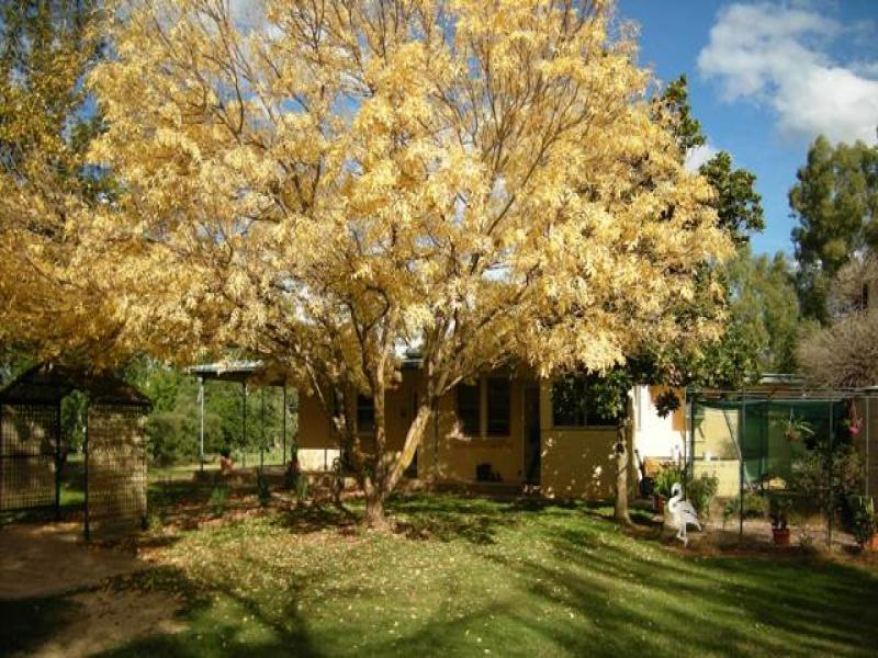 Address available on request, Morven, NSW 2660