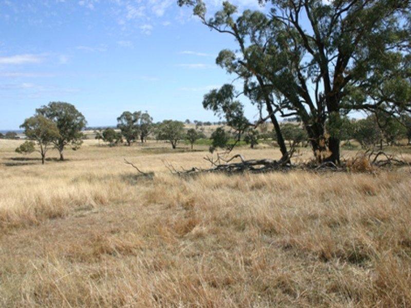 134 Lemmons Road, Borenore, NSW 2800