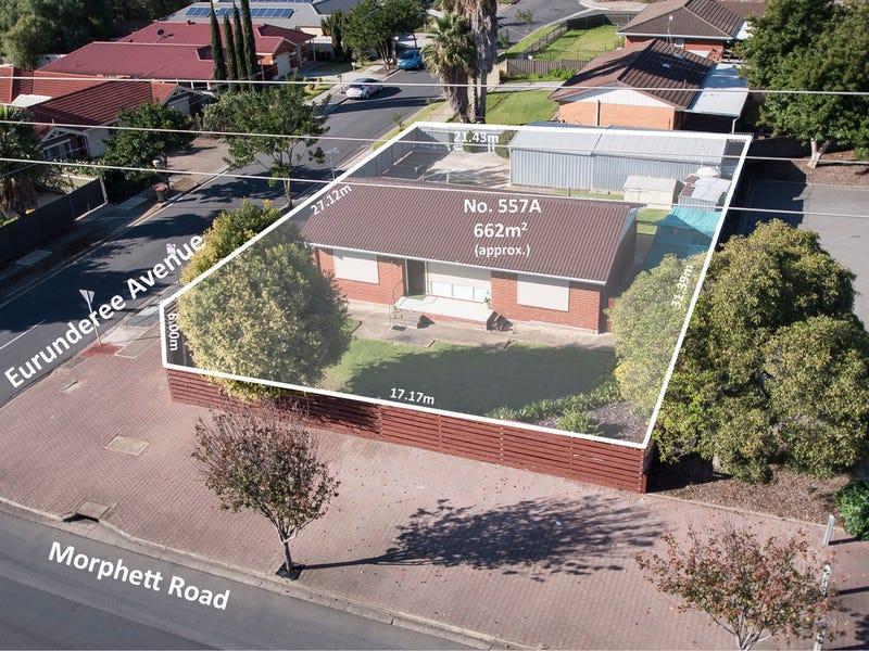 557a Morphett Road, Seacombe Gardens, SA 5047