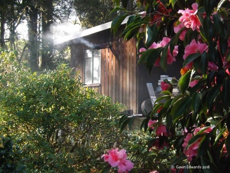 Wildwoods 499 Lapoinya Road, Lapoinya, Tas 7325