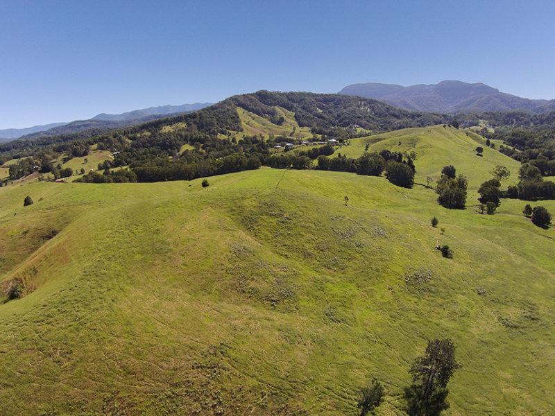 491 Nobbys Creek Road, Nobbys Creek, NSW 2484